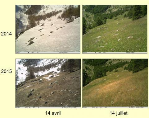 alpage crouzet - suivi photo ALpages sentinelles - © Parc national des Écrins