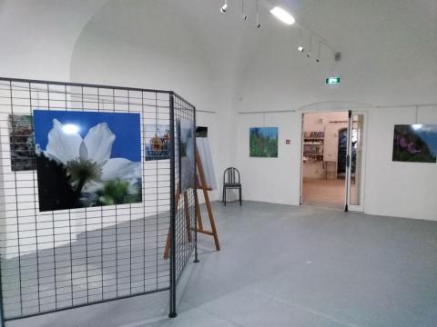 Hautes en couleurs à la Tour Brune - Marine Metzinger, PNE