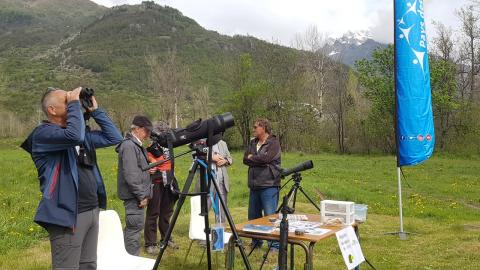 Envergure alpine  - Ecrins de nature 2019 en Vallouise - © Parc national des Ecrins
