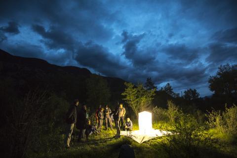 Observations nocturnes à Rama - Ecrins de nature 2019 en Vallouise - © P.Saulay-Parc national des Ecrins