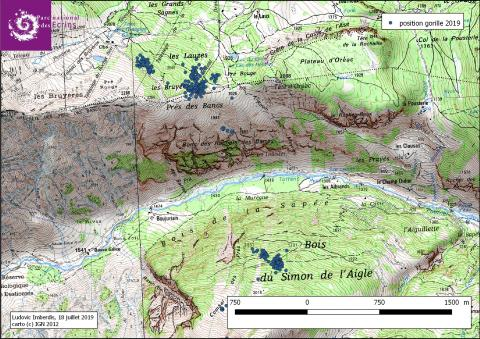 Carto tétras Gorille - vallouise - Parc national des Ecrins