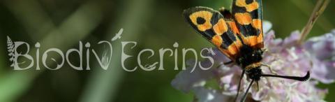 biodiv'ecrins- capture d'ecran - Parc national des Ecrins