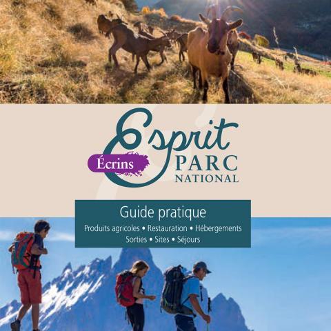 Gaec Eibans - brebis brigasques - photo T.Maillet - Parc national des Ecrins