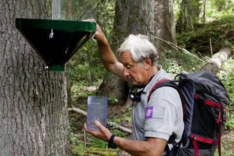 Piège Réserve intégrale - photo P.Saulay - Parc national des Ecrins