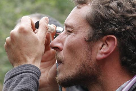 Identification - photo C.Coursier - Parc national des Ecrins
