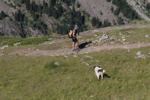 Randonneur et chien de protection - photo C.Coursier - Parc national des Ecrins