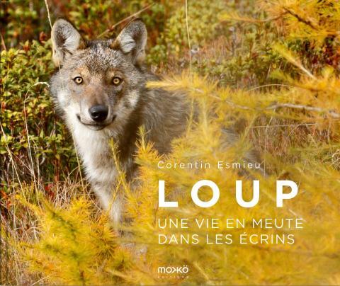 Loup, une vie en meute - Corentin Esmieu - 2020