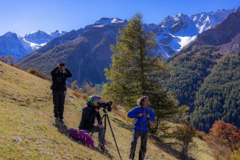 Sortie de sensibilisation à la biodiversité dans la vallée de la Guisane - © B. Bodin - PNE