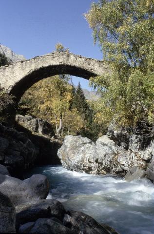 Pont de la Lavey ou des Rajas sur le Vénéon sous Champhorent ©Roche Daniel - Parc national des Ecrins