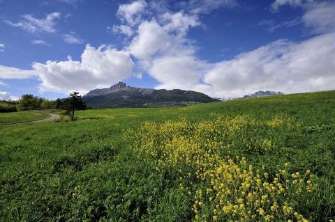 Les Aiguilles de Chabrières versant sud vues depuis le bas de Prunières ©Mireille Coulon - Parc national des Ecrins