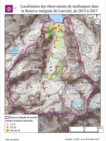 Localisation des observations des gastéropodes dans la Réserve intégrale de Lauvitel de 2013 à 2017