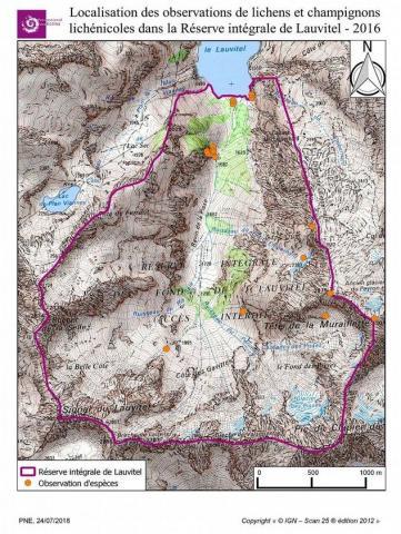 Localisation des observations de lichens et champignons lichénicoles dans la Réserve intégrale de Lauvitel 2016