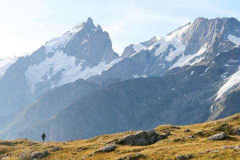 Le massif de la Meije vu du plateau d'Emparis - © Pascal Saulay - Parc national des Ecrins