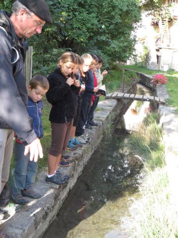 ecole Freissinières - sept 2015 - atour de l'eau avec le Parc national des Ecrins