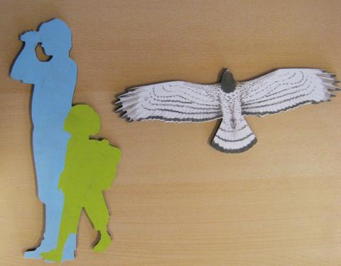 Circaète -  - silhouette - école de Puy-Saint-Vincent avec le Parc national des Écrins