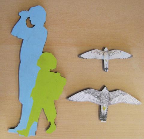 faucons  - silhouette - école de Puy-Saint-Vincent avec le Parc national des Écrins