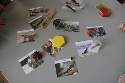 Jeunes découvreurs du Parc national des Ecrins - La Motte-en-Champsaur 2018-2018 - traces et indices des animaux