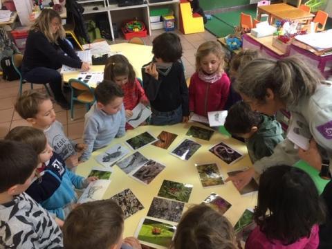 Jeunes découvreurs des Vigneaux avec le Parc national des Ecrins - intervention en classe - janvier 2019