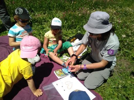 Jeunes découvreurs La Grave - Tout sur les papillons avec le parc national des Écrins - 2018-2019