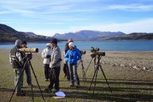 Des groupes d'observateurs volontaires pour le comptage des oiseaux d'eaux - janvier 2015 - Savinois © Geffrin Jean-Marie