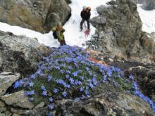 Programme écologie verticale - Parc national des Ecrins - ©  Sébastien Ibañez