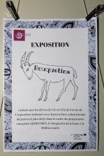 Vernissage expo bouquetins Maison du parc de Vallouise, 8 oct 2019 - ecole l'Argentière-la-Bessée - Lemed Ibex - © T.Maillet - Parc national des Écrins
