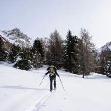 Tournée à ski dans l'Embrunais - © M. Coulon - PNE