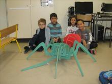 araignée - maquette Parc national des Ecrins