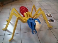 Maquette fourmi - Jeunes découvreurs-Chauffayer-insectes-Parc national des Ecrins-©DR