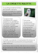 9 mars   En début d'après-midi nous avons visité le musée sur la faune de montagne de Bourg d'Oisans. Notre visite était active car par petits groupes de 2 ou 3 élèves, nous devions répondre à un questionnaire dont les réponses se trouvaient au niveau des différentes vitrines du musée.