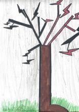 Les arbres - école bourg d'Oisans 2017/2018 - Parc national des Écrins