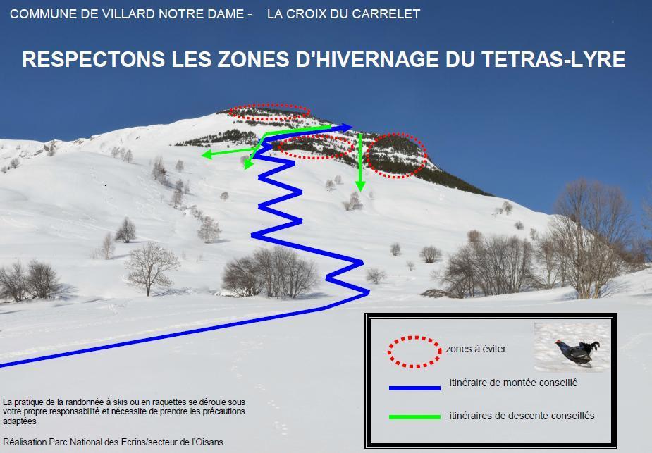 Zone de mise en défens pour la protection du tétras-lyre. PN-Ecrins