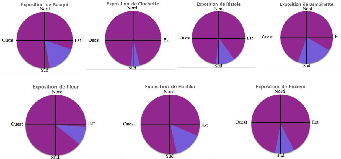 Choix d'exposition - bouquetins - Parc national des Ecrins 2014