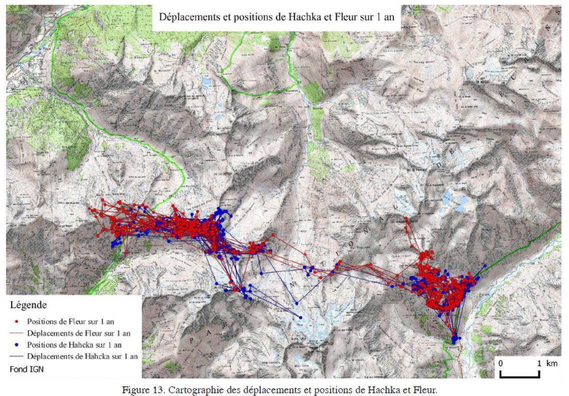 Des corridors de déplacement - © Fond carte IGN - donnéées Parc national des Ecrins
