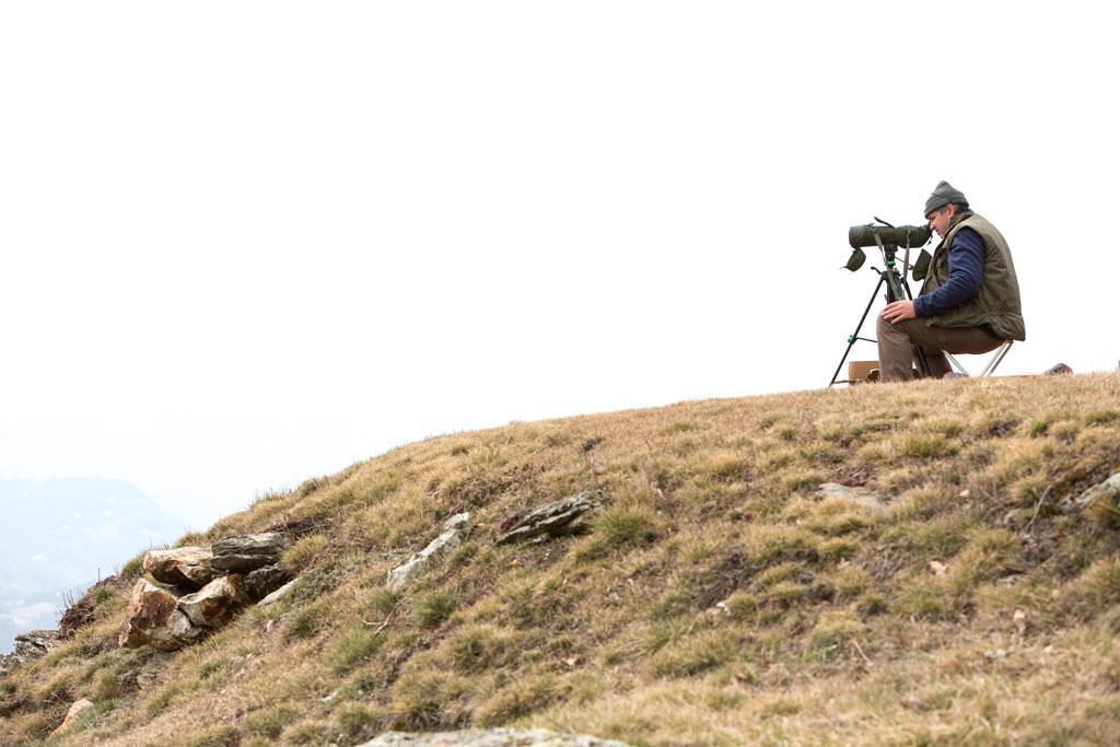 Comptage aigles royaux mars 2015 - © Pascal Saulay - Parc national des Ecrins