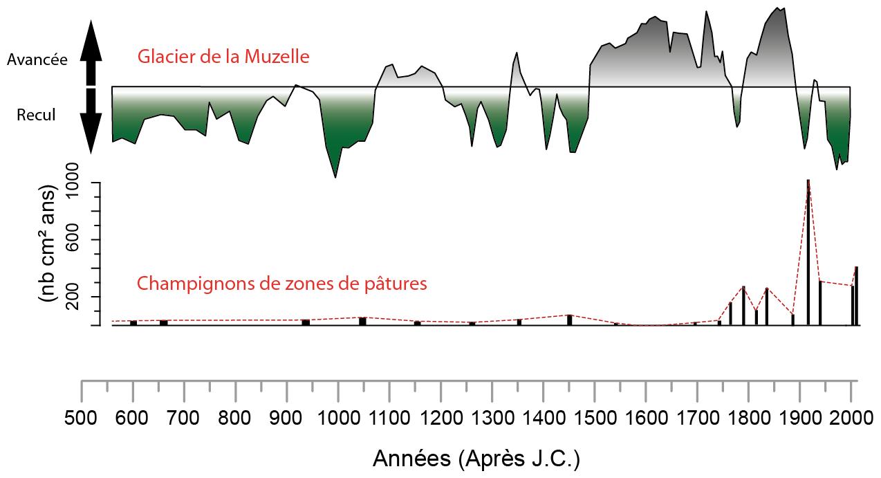 Figure extraite travail thèse Laurent Fouinat à la Muzelle (Oisans) - Laboratoire EDYTEM