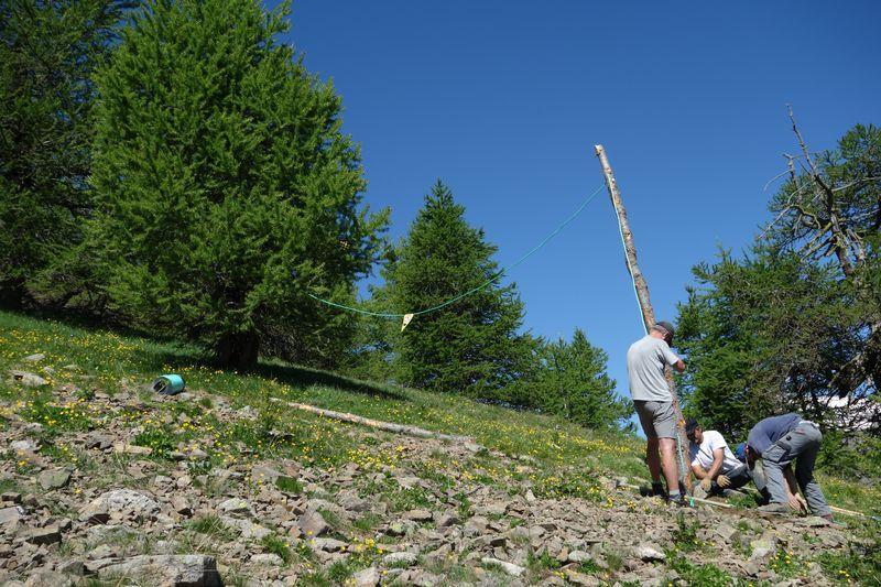 travaux itinéraire Seyte - protection tétras lyre - juin 2016- © T-Maillet - Parc national des Ecrins
