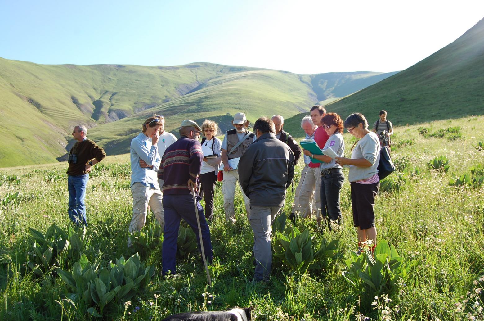 concours prairies fleuries en 2010 Haute-Romanche