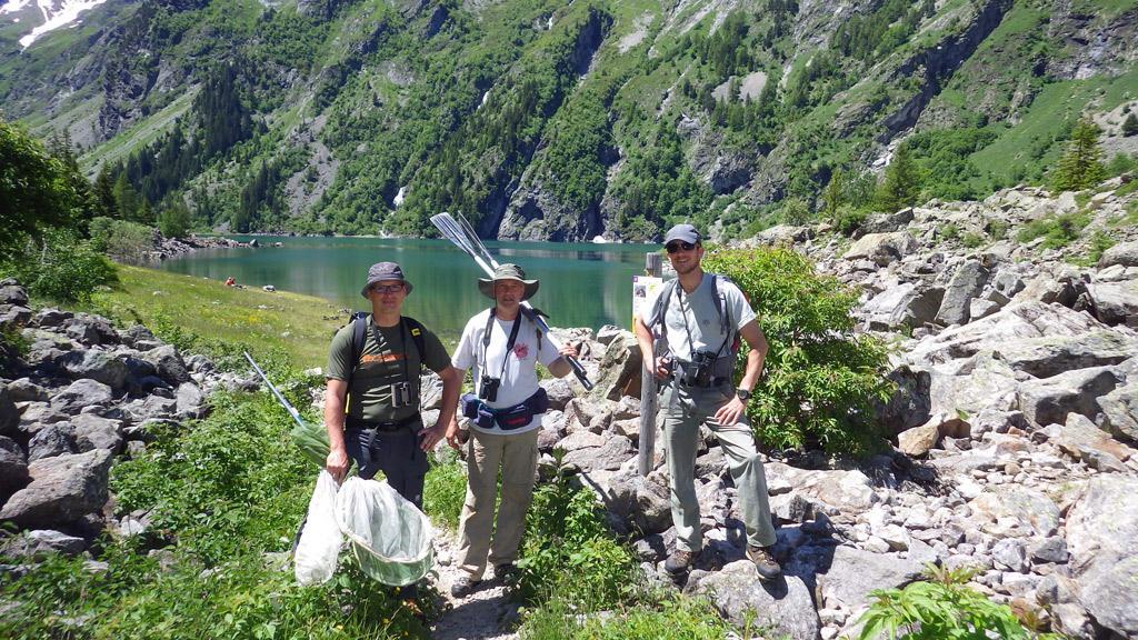 Prospection papillons -  -réserve intégrale du Lauvitel - Parc national des Ecrins