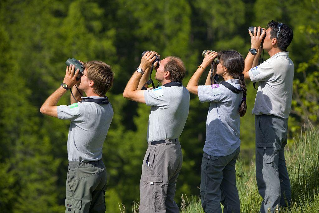 Gardes-moniteurs de 4 parcs nationaux différents en observation lors d'un stage ornithologie