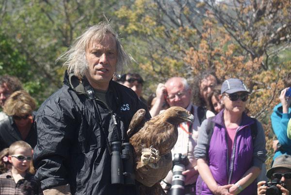 MIchel Phisel, lors du lâcher d'un aigle royal en 2013 dans l'Embrunais - photo R. Legoff