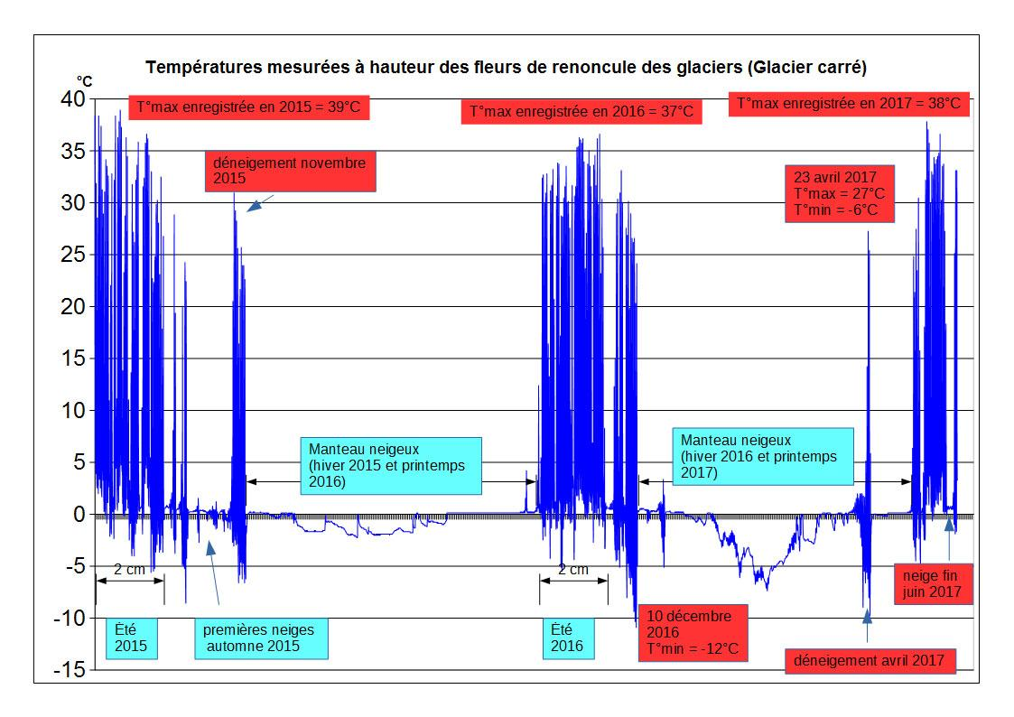 Graphique températures - renoncules des glaciers  © C.Dentant - Parc national des Écrins