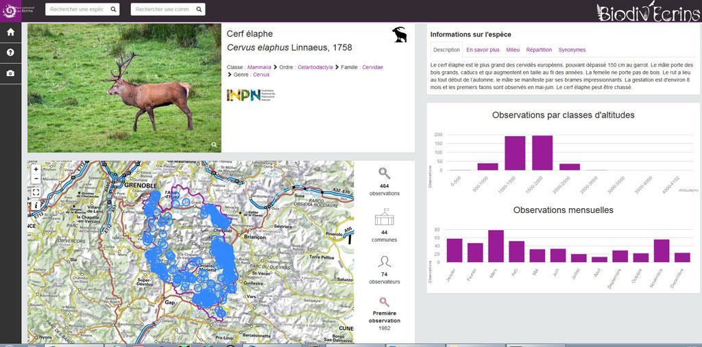 Le Cerf élaphe sur Biodiv'Ecrins par Aloïs Leroy stage 3ème au Parc national des Ecrins dans le Champsaur - dec 2017