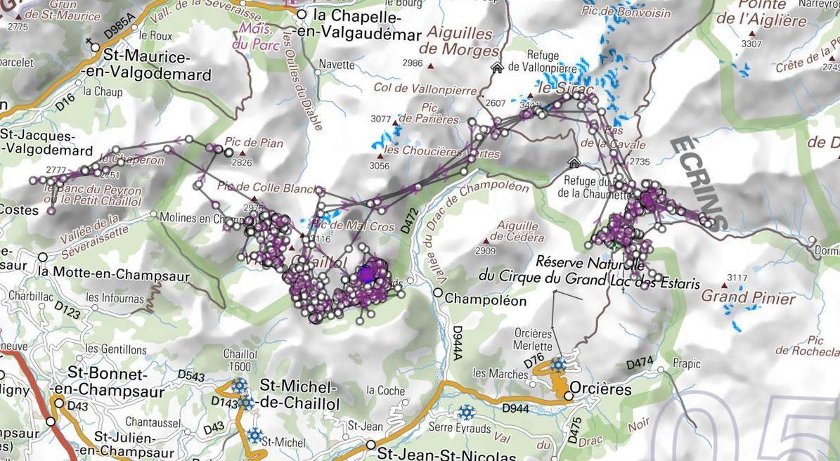 Champsaur - ibex 2017 - Parc national des Écrins