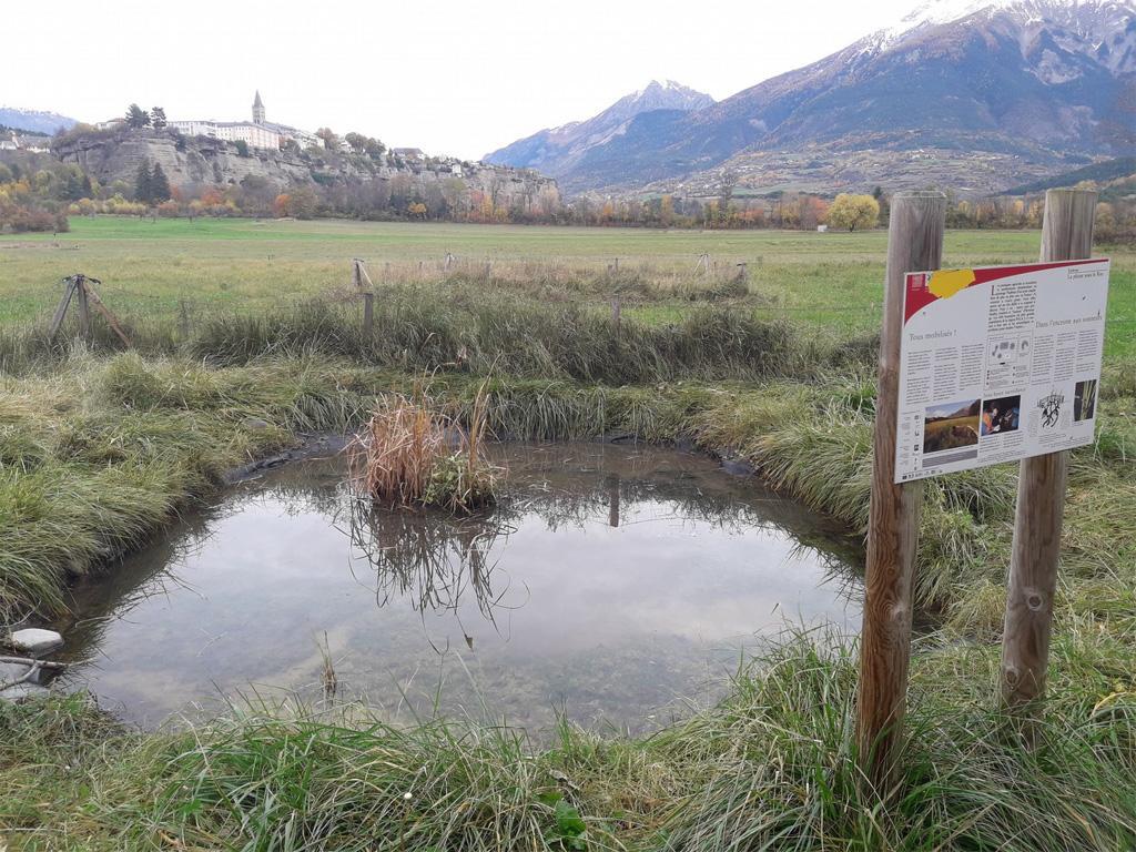 travaux mares sonneurs - novembre 2018 - Parc national des Écrins