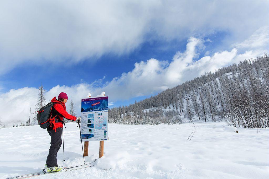 Information faune en hiver - Puy Saint Vincent - © T.Maillet - Parc national des Écrins