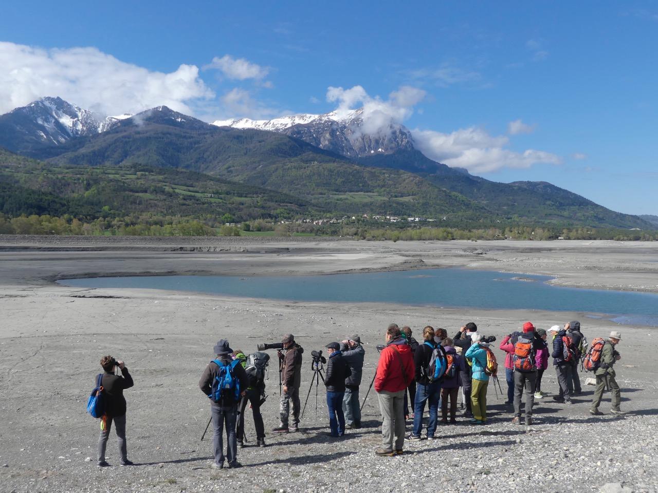 Observation migrateurs - mai 2019 © Parc national des Écrins