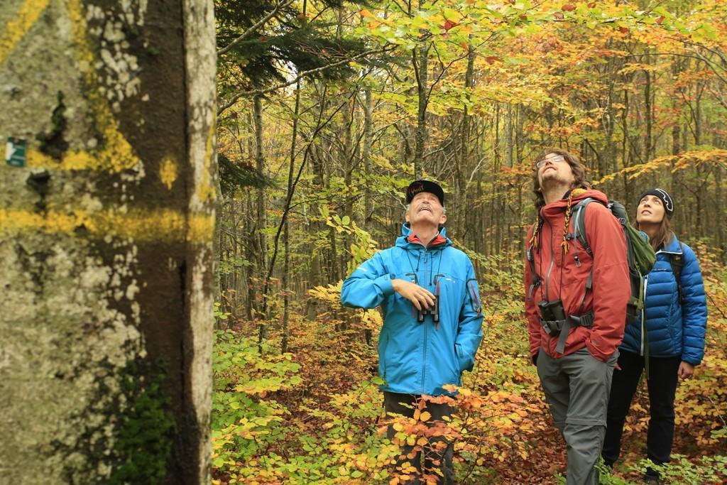 Rencontres réseau chouettes de montagne à Florac - © M.Corail - Parc national des Écrins