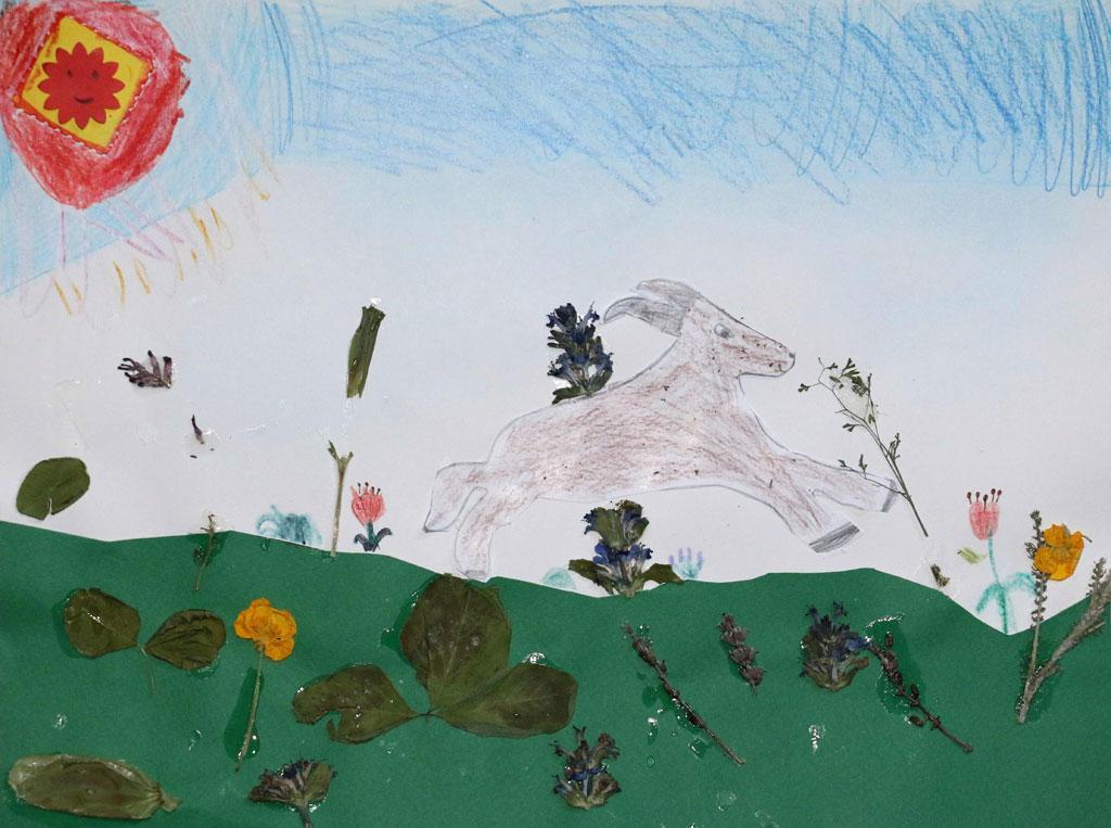 Lauréats concours dessin bouquetin - Parc national des Écrins 2019