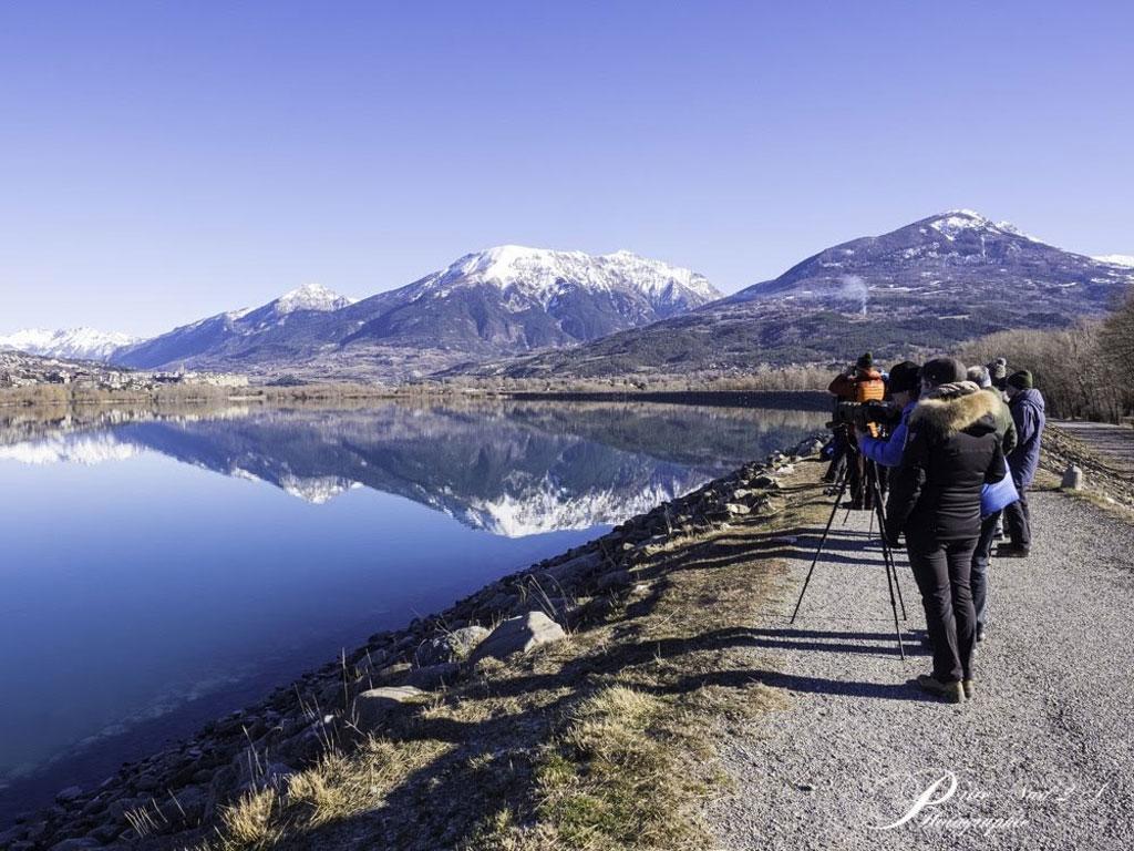 Comptage wetlands interational à serre ponçon - 2020 - photo Nadine Budin